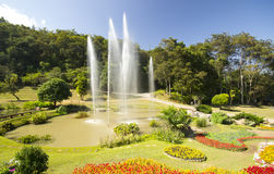 Changchai. Beautiful view of flowers and fountain as background in rain forest Royalty Free Stock Photos