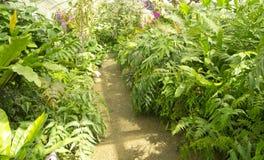 Changchai. Botanical Gardens in modern greenhouse Stock Photo