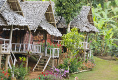 Changchai. Beautiful hut mountaineer homestay and flower Royalty Free Stock Photos