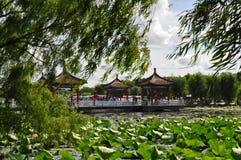 Changchun jeziora Południowy park w Jilin obraz royalty free