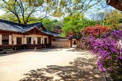 Changdeokgung, βασιλικό παλάτι στη Σεούλ, μυστικός κήπος, χρόνος ανοίξεων Δημοφιλής προορισμός για το ταξίδι στην Ασία στοκ φωτογραφίες με δικαίωμα ελεύθερης χρήσης