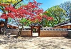 Changdeokgung, βασιλικό παλάτι στη Σεούλ, μυστικός κήπος στοκ εικόνα με δικαίωμα ελεύθερης χρήσης