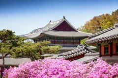 Changdeokgung, palácio real em Seoul, jardim secreto imagens de stock