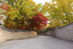 Changdeokgung Palace in autumn Seoul South Korea. Autumn season in Garden of Changdeokgung Palace Seoul South Korea stock images