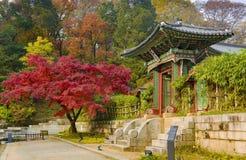 Changdeokgung Palace in autumn Seoul South Korea. Autumn season in Garden of Changdeokgung Palace Seoul South Korea royalty free stock photo