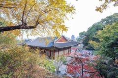 Changdeokgung Palace Stock Photography