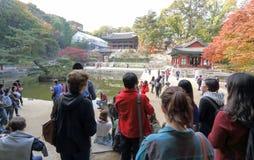 Changdeokgung Palace Stock Photos