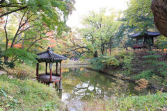 Changdeokgung Palace Royalty Free Stock Photography