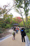 Changdeokgung Palace Royalty Free Stock Images