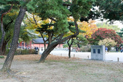 Changdeokgung Palace Stock Images