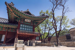 Changdeokgung . Seoul. Changdeokgung Palace or Changdeok Palace, is a large park in Jongno-gu, Seoul, South Korea Royalty Free Stock Photo