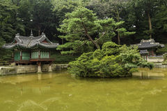 Changdeokgung Tajnego ogródu teren Fotografia Royalty Free