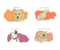The change of dog's feeling. Attention, under enormous stress, calm, anxiety and eager royalty free illustration