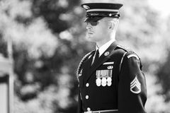 Change of the Guard in Arlington Cemetery. Marine with glasses during change of the Guard in Arlington Cemetery - converted in black and white for more drama Stock Photo