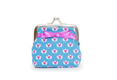 Change purse  on white background Stock Image