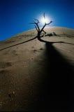 Changement climatique photographie stock libre de droits