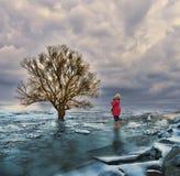 Changement climatique de réchauffement global Photographie stock