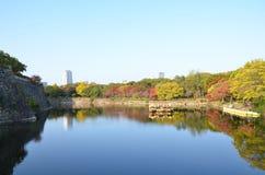 Changement de couleur d'automne Japon au château d'Osaka Photo stock