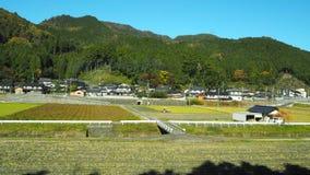 Changement de couleur de feuilles au Japon Photographie stock libre de droits