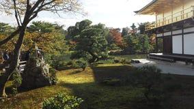 Changement de couleur de feuilles de Kinkakuji Japon Photos stock