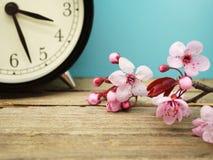 Changement de printemps Photo libre de droits
