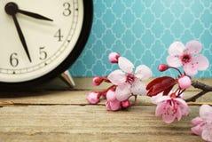 Changement de printemps Photographie stock