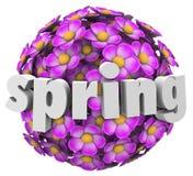 Changement de saison de renouvellement de croissance de fleur de ressort Image libre de droits