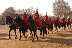 Changement du dispositif protecteur, défilé de dispositifs protecteurs de cheval. Images stock