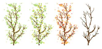 Changes in the nature. Four branches of a tree showing the changing nature Stock Photo