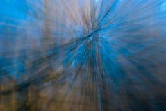 Changez de plan dans la forêt Photographie stock