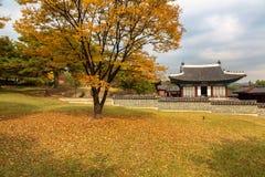 In Changgyeonggung Palace, Seoul stock photos