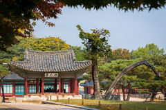 In Changgyeonggung Palace, Seoul Royalty Free Stock Photo