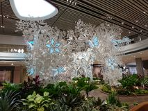 Changi lotniskowego Terminal 4 Otwarty dom Zdjęcia Royalty Free