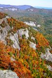 Changing color of leaves on Whiteside Mountain. royalty free stock photo