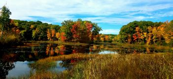 Autumn North royalty free stock photography