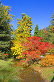 Changing colours Stock Photo