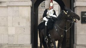 Changing of the horse guards stock footage