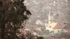 Changing the focus from branches swaying in the wind to church. Changes focus from branches swaying in the wind to panorama of the city with church stock video footage