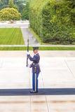 Changing the guard at Arlington Royalty Free Stock Image