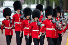 Changing of the Guards Royalty Free Stock Images