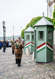 Changing of the Guards in the Buda Castle Stock Image