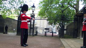 Changing of the Guards in London stock video footage