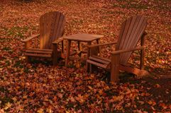 Changing Seasons. Leaves tossed about a New England lawn Stock Image