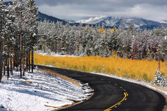 Changing seasons road Royalty Free Stock Photo