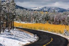 Changing seasons road royalty free stock photo