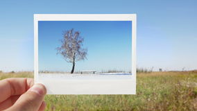 Changing seasons. Changing summer into winter. Hands with instant print stock video footage