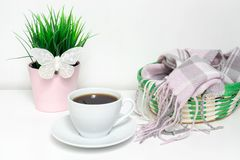 Changing seasons from winter to spring - green plant with white decorative butterfly, a green basket with warm woolen clothes and. A cup of black coffee on royalty free stock photos