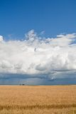 Changing weather. Blue sky, thunder front and whea Stock Image