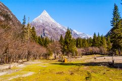 Changping valley scene of the Siguniang Mountain. Changping valler is one beautiful valler in the Siguniang Mountain. The Siguniang Mountain (Four Girls Mountain stock images