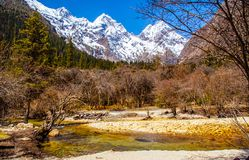 Changping valley scene of the Siguniang Mountain. Changping valler is one beautiful valler in the Siguniang Mountain. The Siguniang Mountain (Four Girls Mountain stock photos